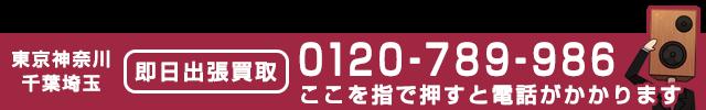 0120-789-986